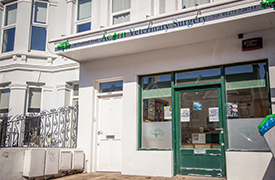 Acorn Veterinary Surgery - Hove