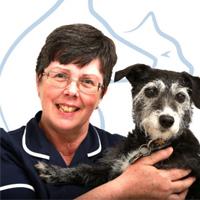 Julie Davies -