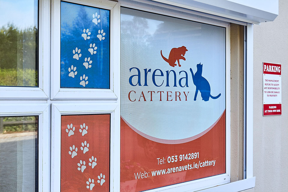Arena Cattery