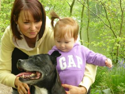 Treating Pets as Family