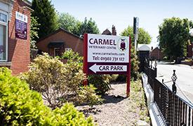 Carmel Vets, Fallings Park