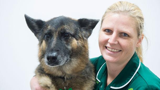 Dog and nurse