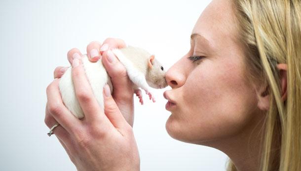 Mouse kiss