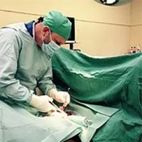 Dr Gavin Lawrie - BVMS, CertEP, MRCVS
