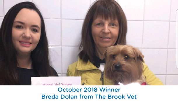 Breda Dolan - The Brook Vet - October 2018