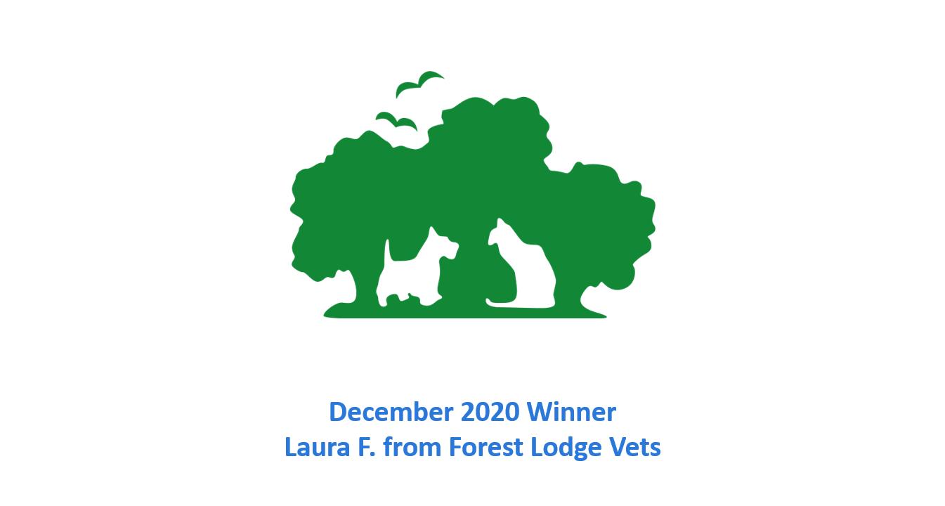 Laura F December 2020