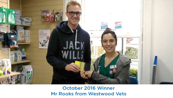 Mr Rooks - Westwood Vets - October 2016
