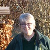 Carole Parry -