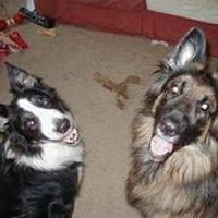 Ellie & Acer -