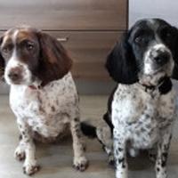 Tia & Domino -