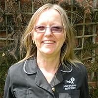 June Shurvall