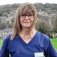 Sue Grillo