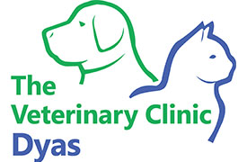 The Veterinary Clinic, Dyas