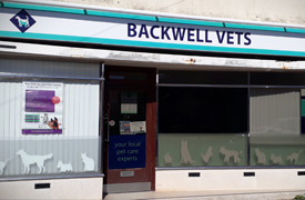 Backwell