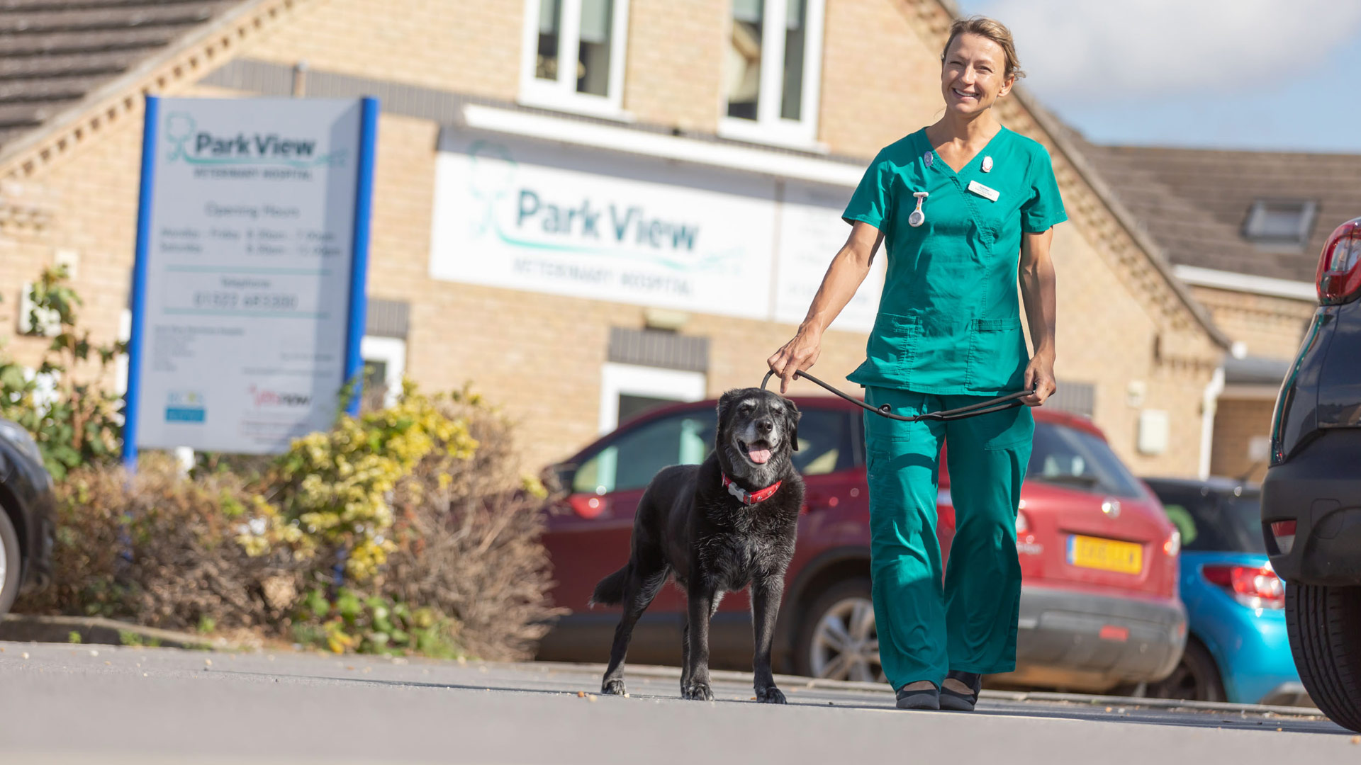 Park View Veterinary Hospital Pet Advice | Vets in Lincoln ...